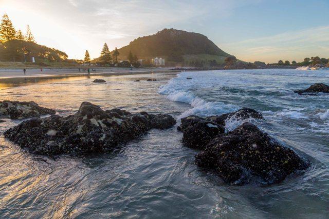 TRG, Tauranga, Bay of Plenty
